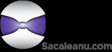 sacaleanu.com